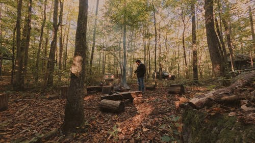 Time Lapse Video of People in the Woods