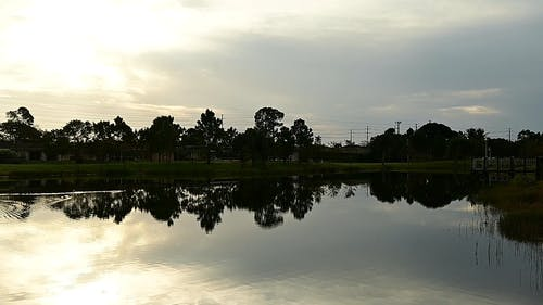 The  Stillness of the Water