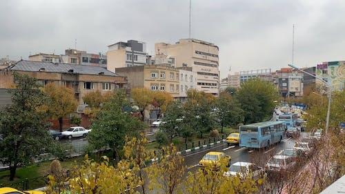 City Traffic on a Rainy Day