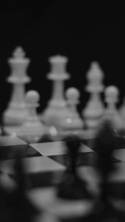 Black and White Chess Move