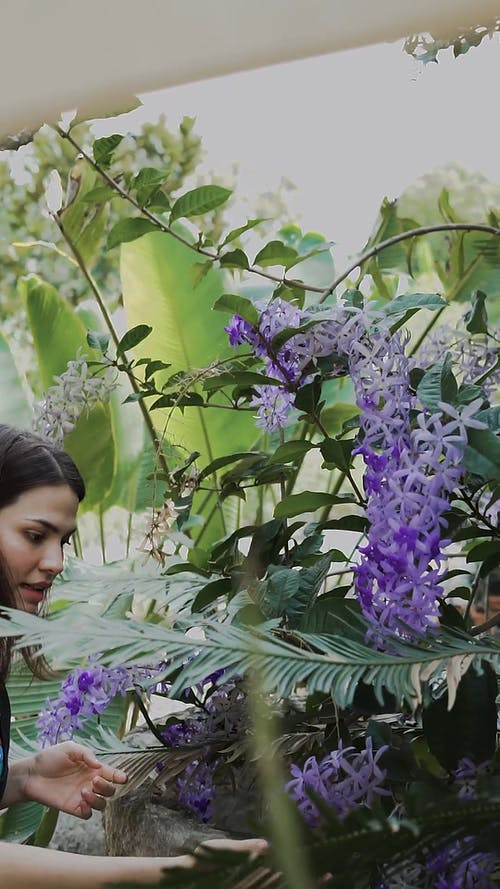 A Woman Looking at Flowers
