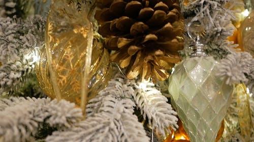 Close Up Shot of a Christmas Tree