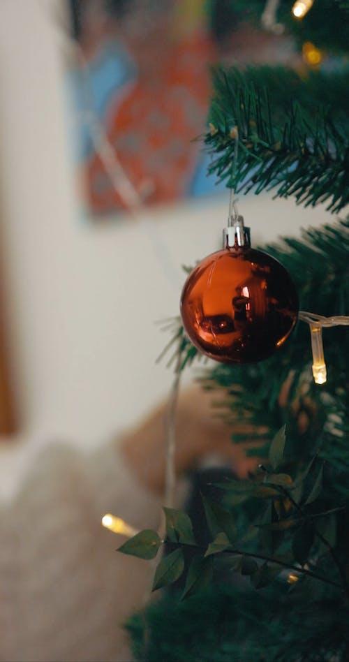 A Person Putting Christmas Light on a Christmas Tree