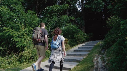 Man and Woman Walking Up the Stairs in the Middle of the Forest