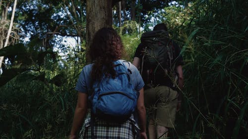 Man and Woman Hiking in the Forest