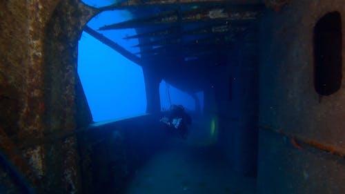 A Diver Surveying A Sunken Ship