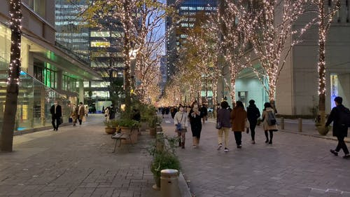 Busy Tokyo Street with Christmas Lights