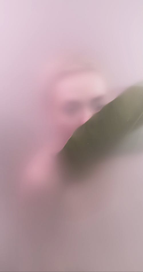 A Woman Touching a Leaf behind Frosted Glass