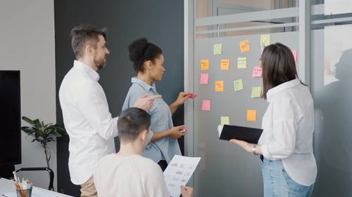 A Group of People Having Their Team Meeting