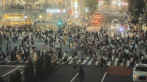 The Busy Shibuya Crossing