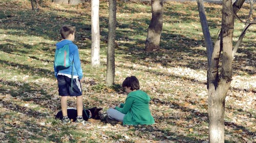 Two Boys with Their Dog in a Park