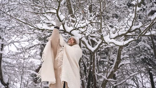 Woman Removing Snow on Tree Branches