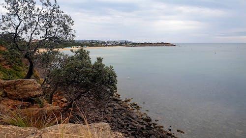 Rocky Bay Landscape