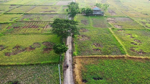 Drone Shot of Rural Area