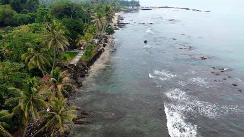 Drone Shot of Tropical Beach