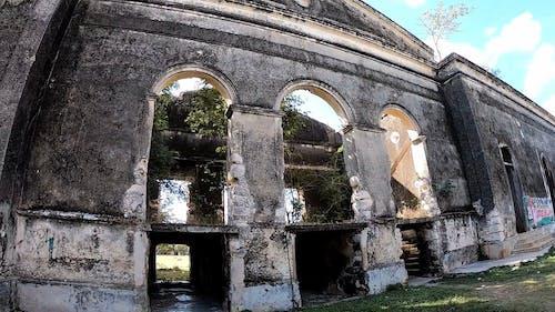 Exploring Ruins
