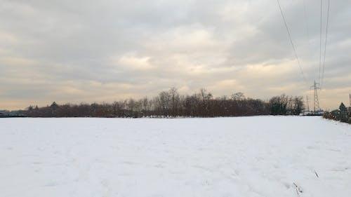 Panning Shot of Winter Landscape
