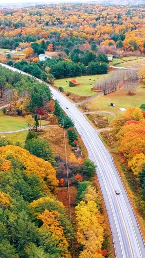 Drone Footage of a Highway During Autumn