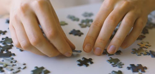 Putting Jigsaw Puzzle Together