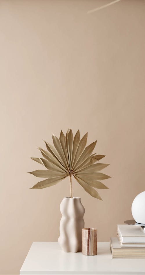 Person Putting Dried Palm Leaf on a Vase