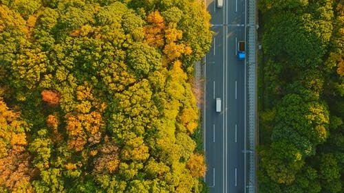 Top View of Vehicles Driving on Highway