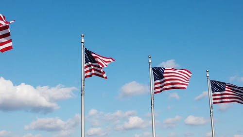 Panning Shot of American Flags