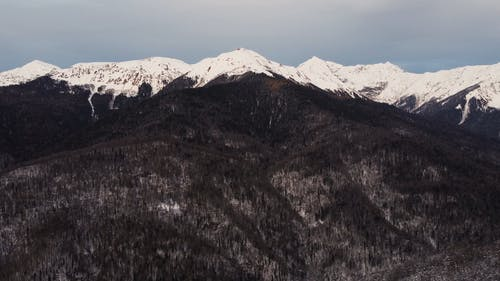 An Aerial Footage of a Forest and Snow-Capped Mountains