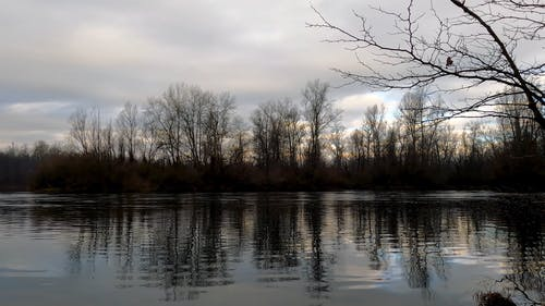 A Footage of a Calm Lake