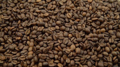 Close-Up Video of Coffee Beans