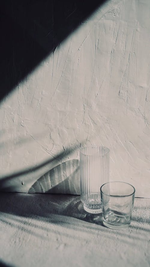 Shadow of Palm Leaves with Glasses