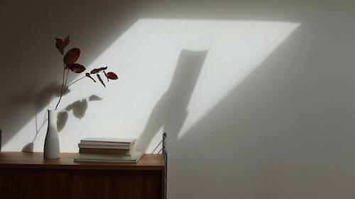 Ombra Delle Mani Di Una Persona La Scansione Di Un Libro