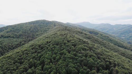 An Aerial Video of Mountains