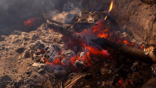 Close-up Footage of a Bonfire