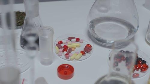 A Chemist Laboratory