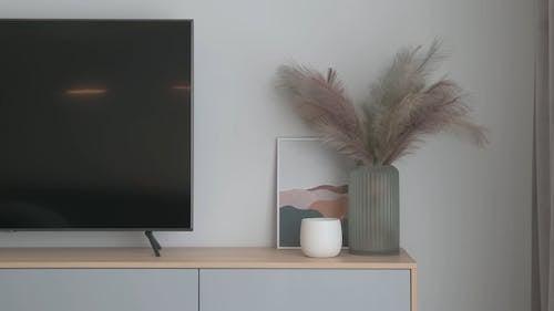 A Minimalist Television Area