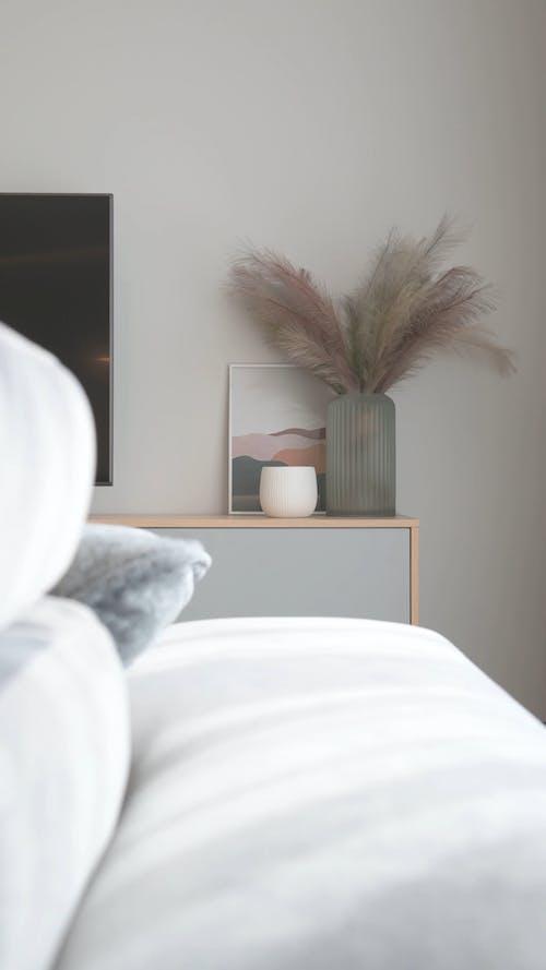 Video Inside a Bedroom