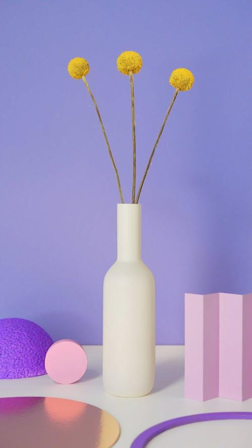 Studio Shot of Flowers in the Vase