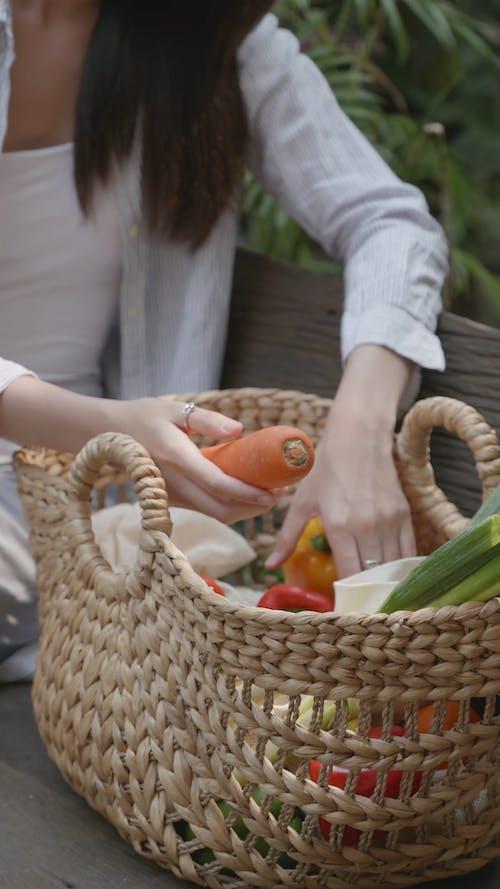 A Basket Full of Vegetables