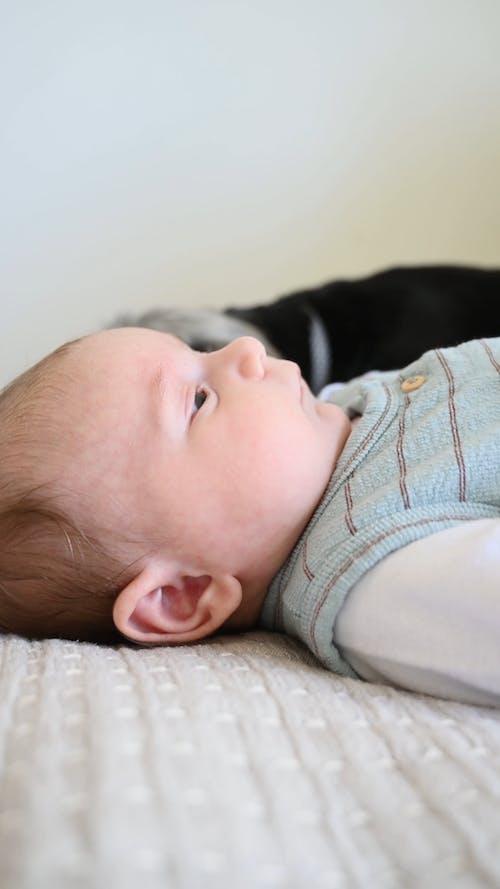 Cute Baby Lying Down