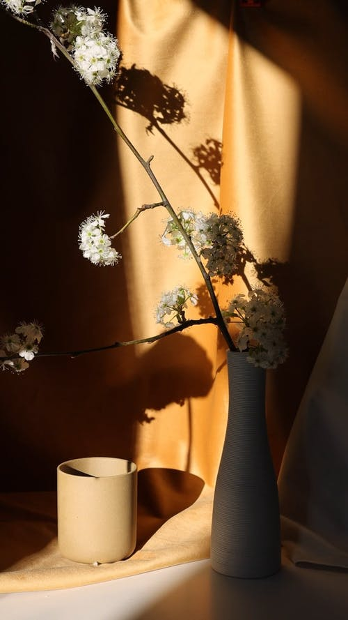 White Flowers on a Ceramic Vase