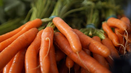 Close-Up Video of Carrots
