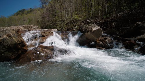 Close-Up Video of Flowing Stream
