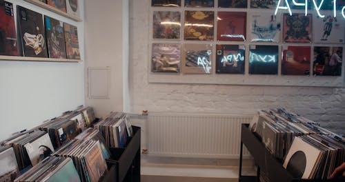 Women Browsing Vinyl Records