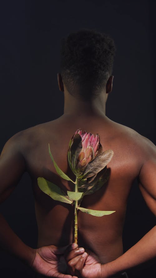 Man Holding a King Protea Flower Behind his Back