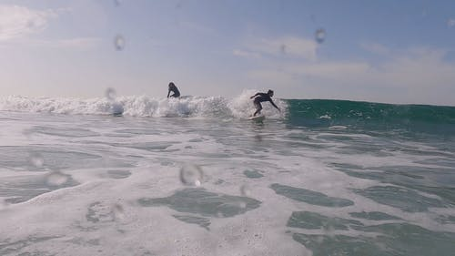 People Surfing on the Beach