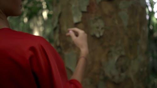 Woman Touching a Tree