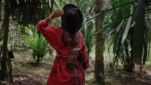 Frau, Die Durch Den Wald Geht