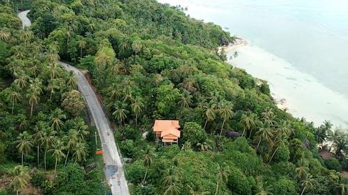 Drone Footage of a Road Near a Beach