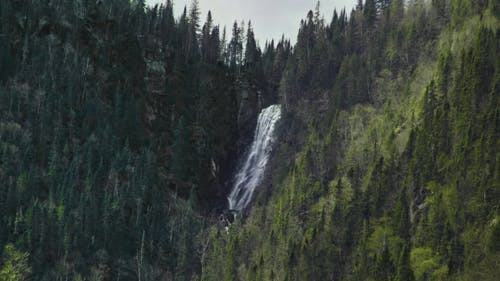 Waterfall in Forest Covered Mountain