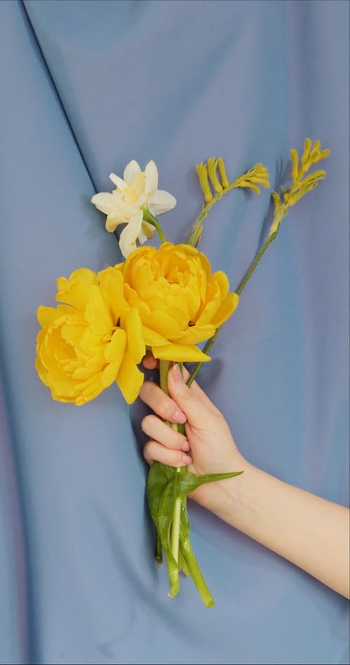 A Person Holding a Bouquet of Flowers